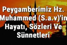 islami sözer